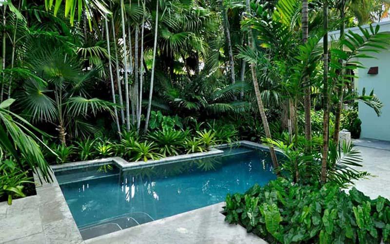 piscina pequeña decoración vegetal