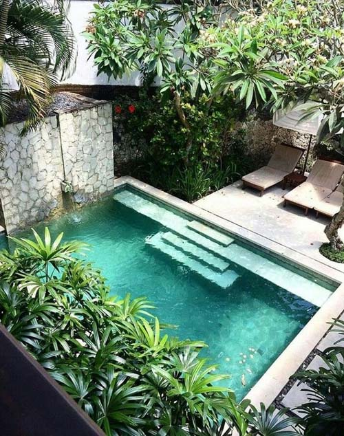 plantas para piscinas